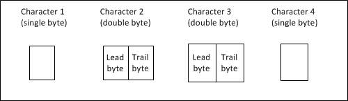 Terms for bytes