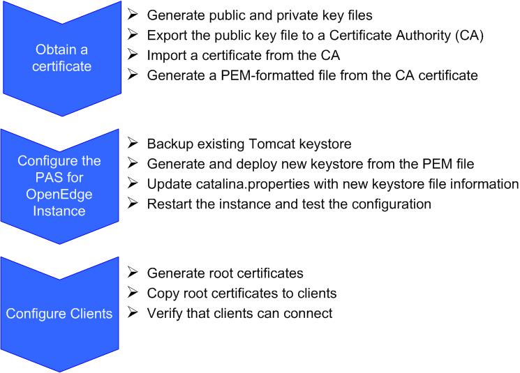 Configuring Pas For Openedge For Ssltls